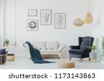 graphics above a wooden couch... | Shutterstock . vector #1173143863