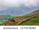 scenic view of vegetable fields ... | Shutterstock . vector #1173178483