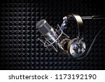 Headphones On Microphone On Th...
