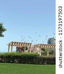 birds flying in the sky kuwait | Shutterstock . vector #1173197503