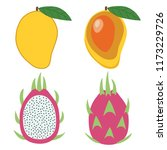 whole mango and dragon fruit... | Shutterstock .eps vector #1173229726