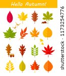 vector set of colorful autumn... | Shutterstock .eps vector #1173254776