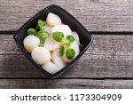raw scallops with salad . fresh ... | Shutterstock . vector #1173304909