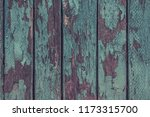 vintage wooden surface covered... | Shutterstock . vector #1173315700