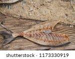 Small photo of fish bine and wood