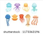 Colorful Jellyfish Set ...