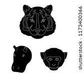 wild animal black icons in set... | Shutterstock .eps vector #1173400366