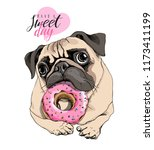 adorable beige puppy pug with a ... | Shutterstock .eps vector #1173411199