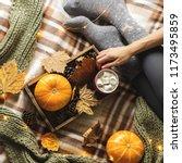 autumn still life from tray... | Shutterstock . vector #1173495859