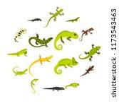 flat lizard icons set.... | Shutterstock . vector #1173543463