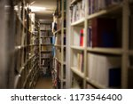 archive store. files  documents ... | Shutterstock . vector #1173546400