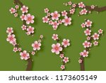 beautiful sakura on green... | Shutterstock . vector #1173605149