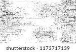 vintage texture with grunge... | Shutterstock .eps vector #1173717139
