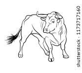 Vector Bull. A Outline...