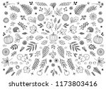 hand drawn floral elements for... | Shutterstock .eps vector #1173803416