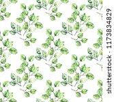 watercolor seamless pattern. a... | Shutterstock . vector #1173834829