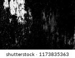 abstract background. monochrome ... | Shutterstock . vector #1173835363