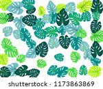 cool philodendron or monstera... | Shutterstock .eps vector #1173863869