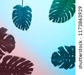 green monstera leaf on gradient ... | Shutterstock . vector #1173863929