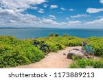 two bicycles on the beach trail ... | Shutterstock . vector #1173889213