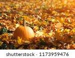 Orange Pumpkin On Autumn Leave...