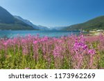 beautiful norwegian landscape... | Shutterstock . vector #1173962269