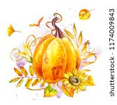 pumpkin. hand drawn watercolor... | Shutterstock . vector #1174009843