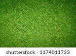 grass texture for background | Shutterstock . vector #1174011733