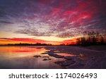 beautiful colorful winter... | Shutterstock . vector #1174026493