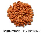 Group Of Apricot Seeds Isolated ...