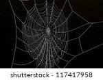 Frozen spider web against black background - stock photo