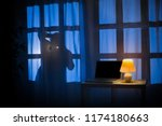 shadow or silhouette of thief... | Shutterstock . vector #1174180663