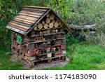 bug hotel   a warm home for all ... | Shutterstock . vector #1174183090