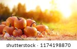 Group of pumpkins in field at...