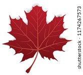 vector illustration of a maple... | Shutterstock .eps vector #1174267573