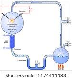 miller urey experiment  | Shutterstock .eps vector #1174411183