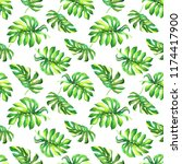 lush green tropical foliage... | Shutterstock . vector #1174417900