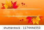 autumn leaves with a banner of... | Shutterstock .eps vector #1174446553