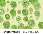 vector illustration. a path in... | Shutterstock .eps vector #1174462123