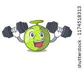 fitness fresh melon isolated on ... | Shutterstock .eps vector #1174518313