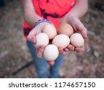 Fresh Free Range Chicken Eggs...
