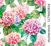 beautiful bright elegant autumn ... | Shutterstock . vector #1174663816