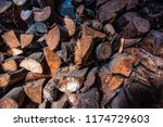 firewood for the winter  stacks ... | Shutterstock . vector #1174729603