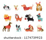Stock vector collection of christmas dogs merry christmas illustrations of cute pets with accessories like a 1174739923