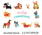 collection of christmas dogs ... | Shutterstock .eps vector #1174739929