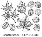 vector illustration of set ink... | Shutterstock .eps vector #1174811383