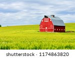 Red Barn In The Wheat Fields Of ...