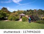 solitary woman walking in a...   Shutterstock . vector #1174942633