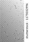 rain drops on transparent... | Shutterstock .eps vector #1175032996