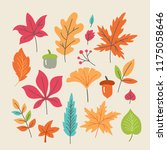 autumn and fall leaves set for... | Shutterstock .eps vector #1175058646